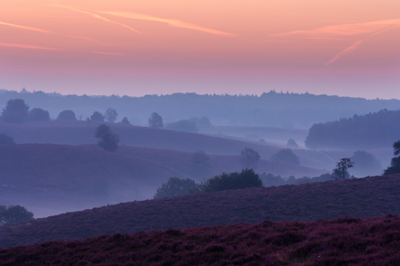landschap,Jan Teeuwen,Sallandse heuvelrug